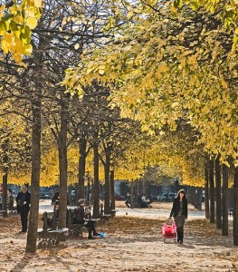 Autumn by dicktay20000