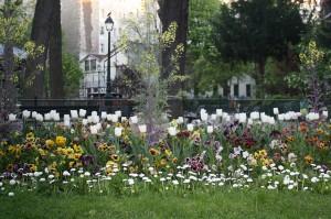 Spring by ParisSharing
